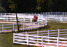 4-Rail Vinyl Ranch Fence